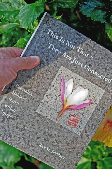 this is not that haiga book cover 1 sml 6x