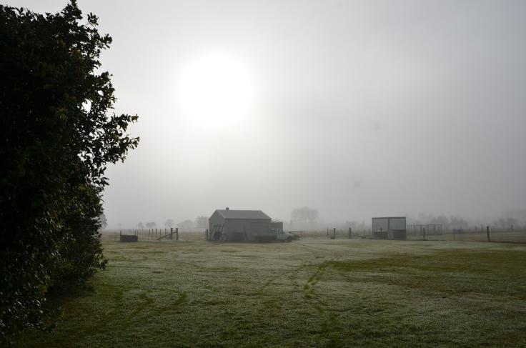 fog (click here)