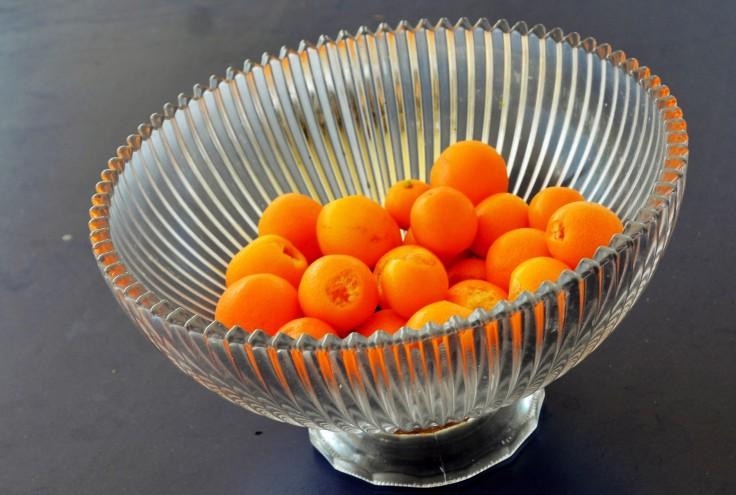 Cumquat harvest (2) - Copy