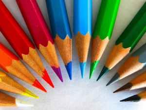 colour-pencils-color-paint-draw-50996.jpeg